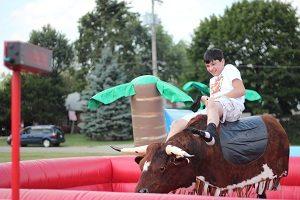 Rodeo-bull